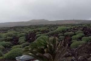 Piso venta en Punta Mujeres, Haría, Lanzarote.