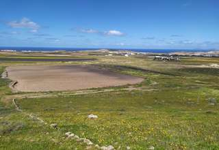 Rural/Agricultural land for sale in Muñique, Teguise, Lanzarote.