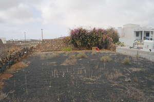Terreno urbano venta en La Vegueta, Tinajo, Lanzarote.