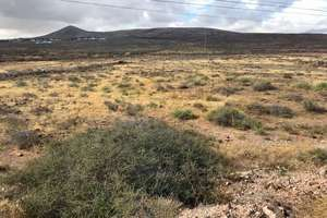 Rural/Agricultural land for sale in Tahiche, Teguise, Lanzarote.