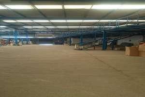 Warehouse in Valterra, Arrecife, Lanzarote.