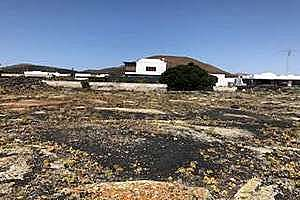 Plot for sale in Masdache, Tías, Lanzarote.